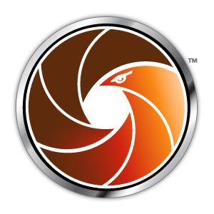 logo birdseye